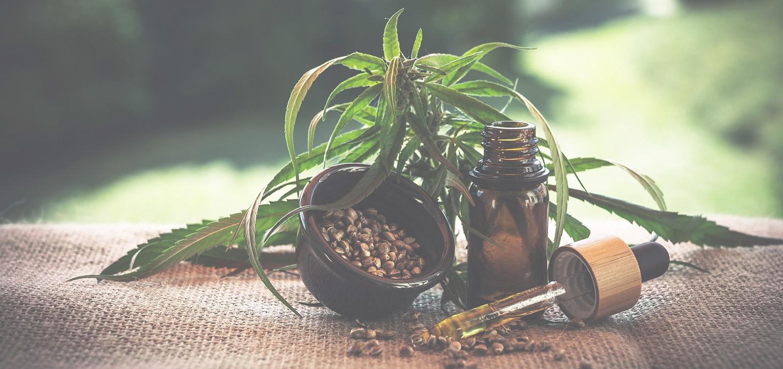 Le bienfait des plantes